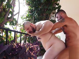 gay bareback hd