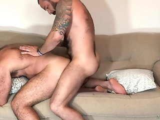 hd videos bear hot gay
